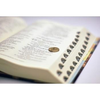 Sveto pismo v večji pisavi